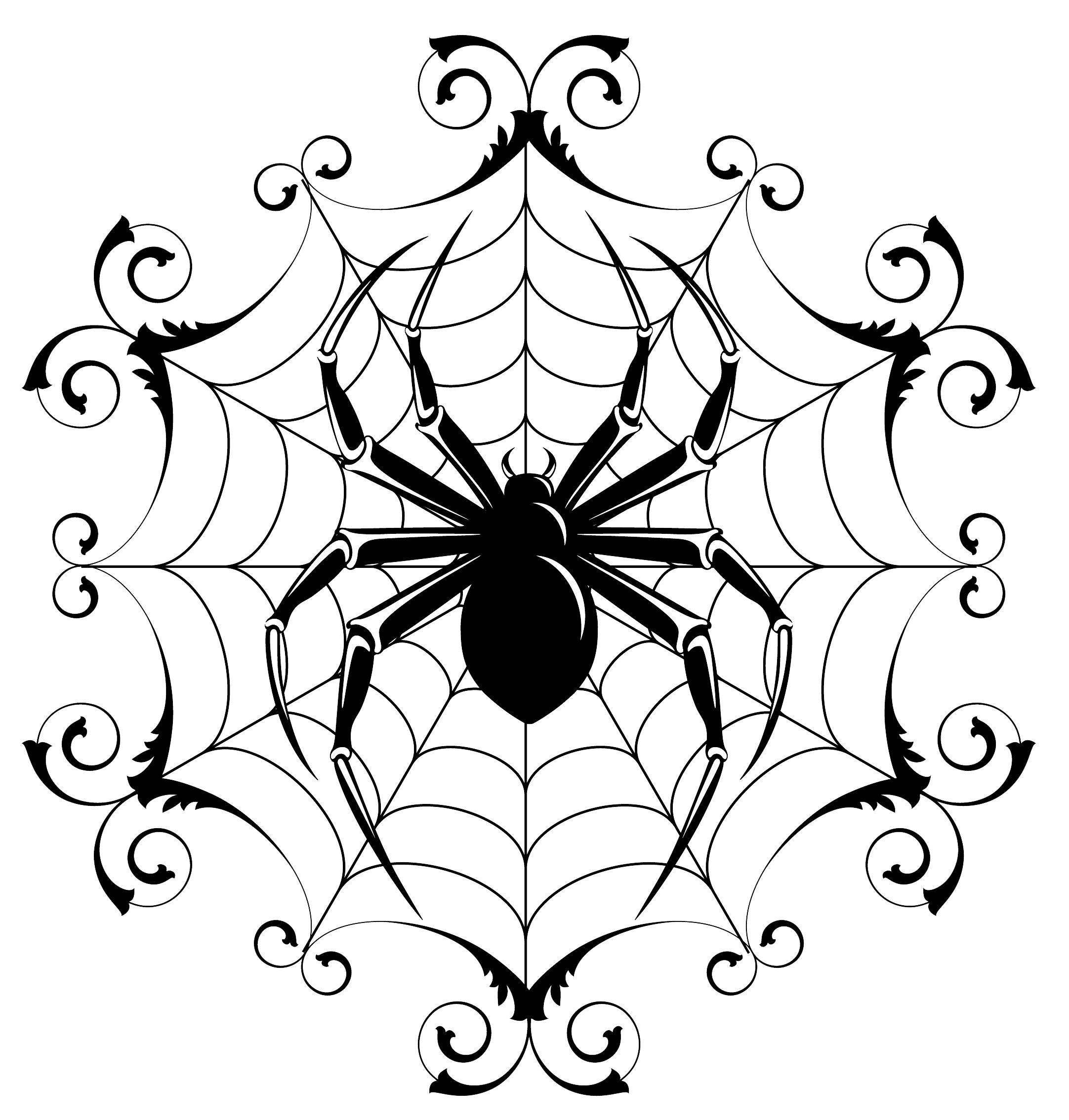 Spiders at getdrawings com. Drawing detail halloween clipart