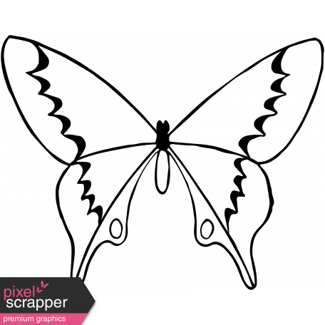 Drawing spring butterfly. Day template graphic by