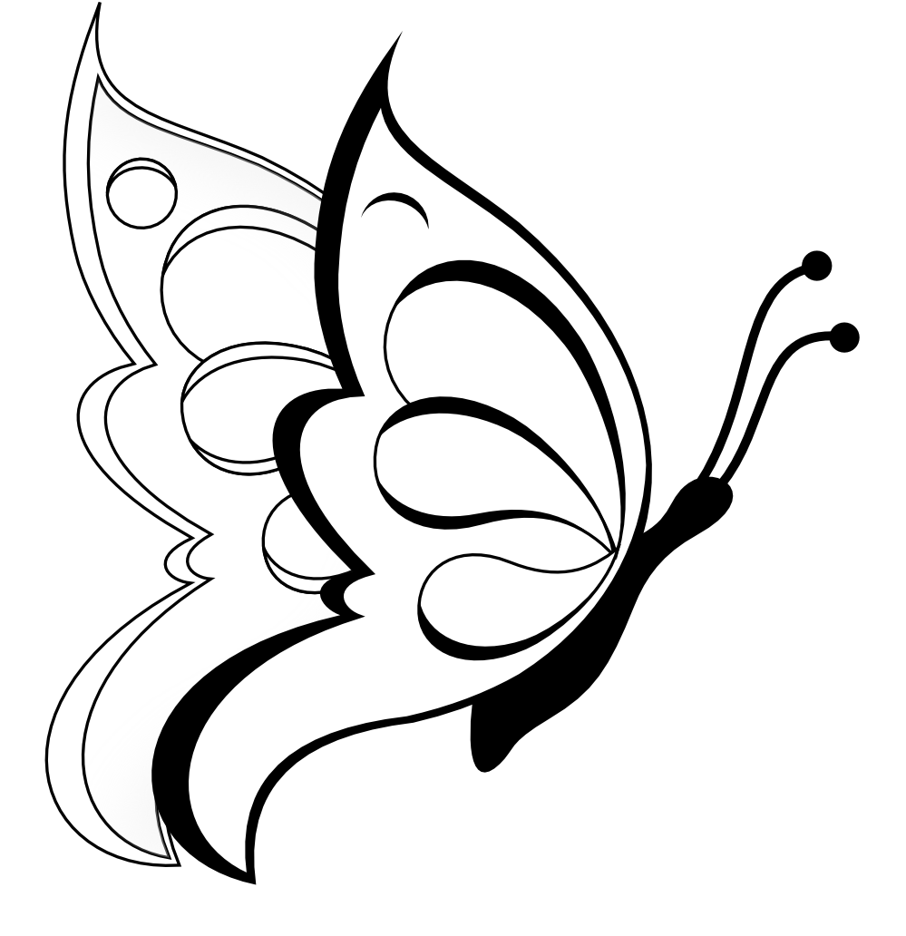 Drawing spring butterfly. Butterflies picture library free