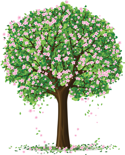 Drawing spring tree. Trees and flowers drawings