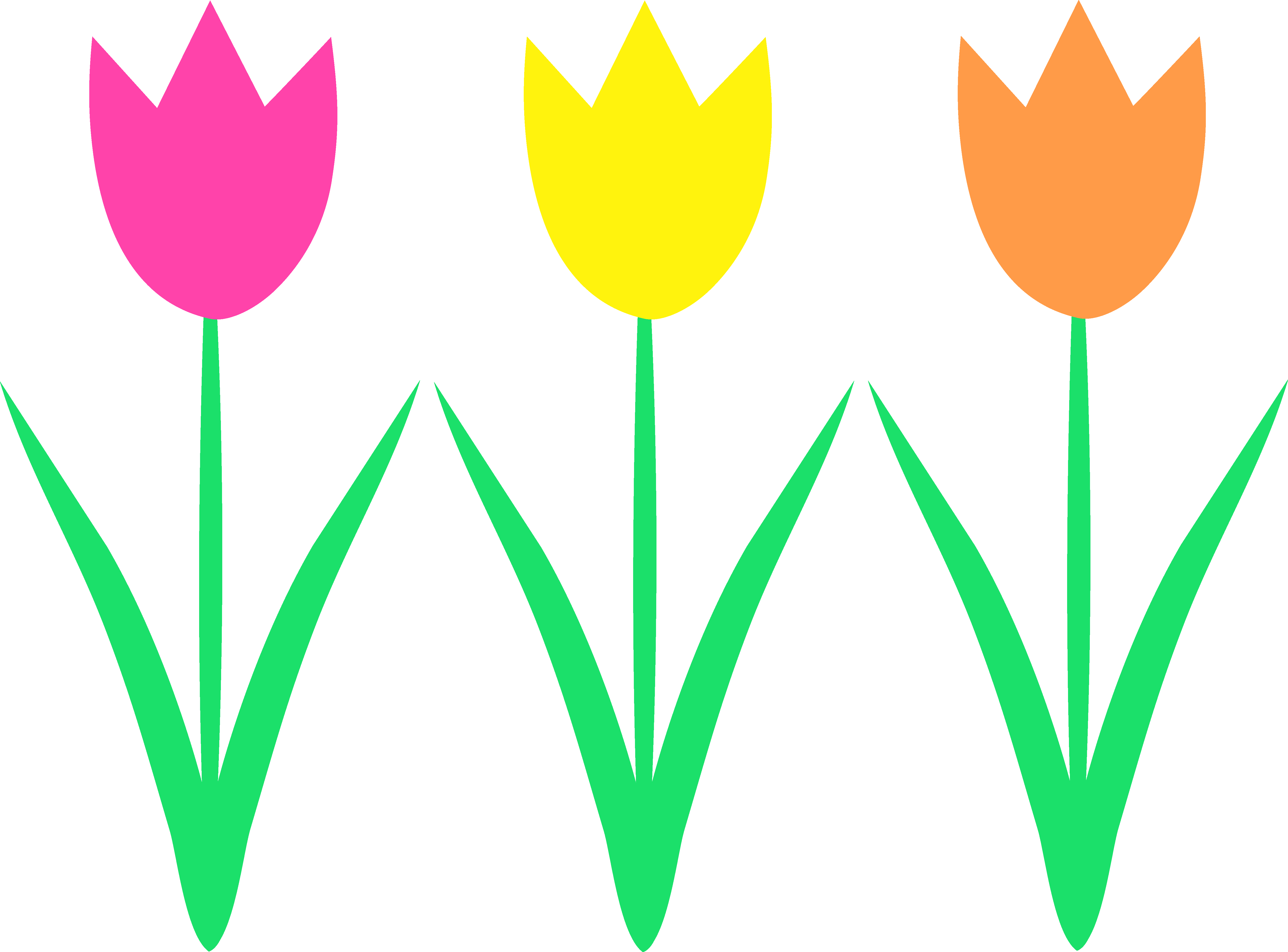 Drawing spring tulip. Flower clipart at getdrawings