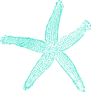 Drawing starfish regeneration. Style guide clker invites