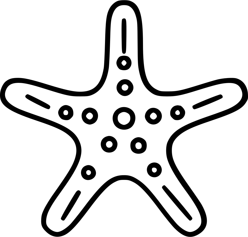 Drawing starfish rock. Free download on ayoqq