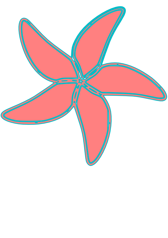 Drawing starfish simple. Clipartist net pxpng