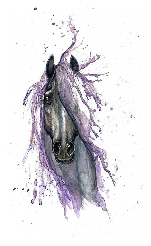 Drawing structures watercolor. Horse painting tattoo transprent