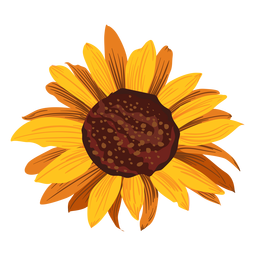 Stroke drawing sunflower. Pattern background vector download