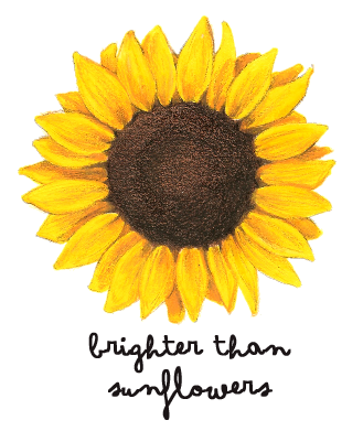 Drawing sunflowers ink. Brighter than stuff to