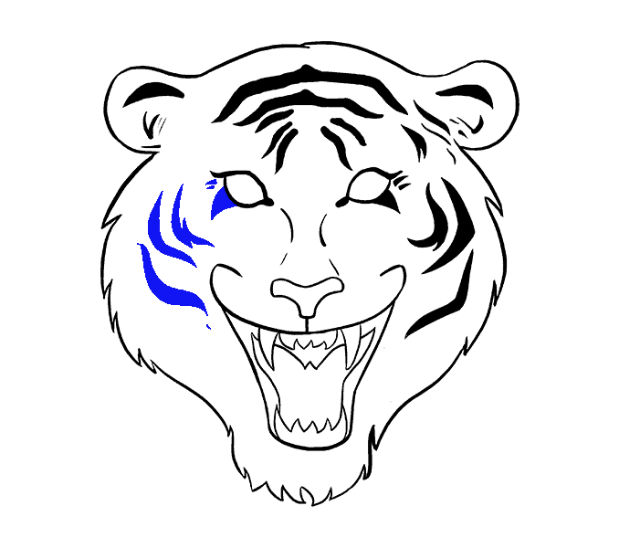 How to draw a. Drawing tigers png library stock