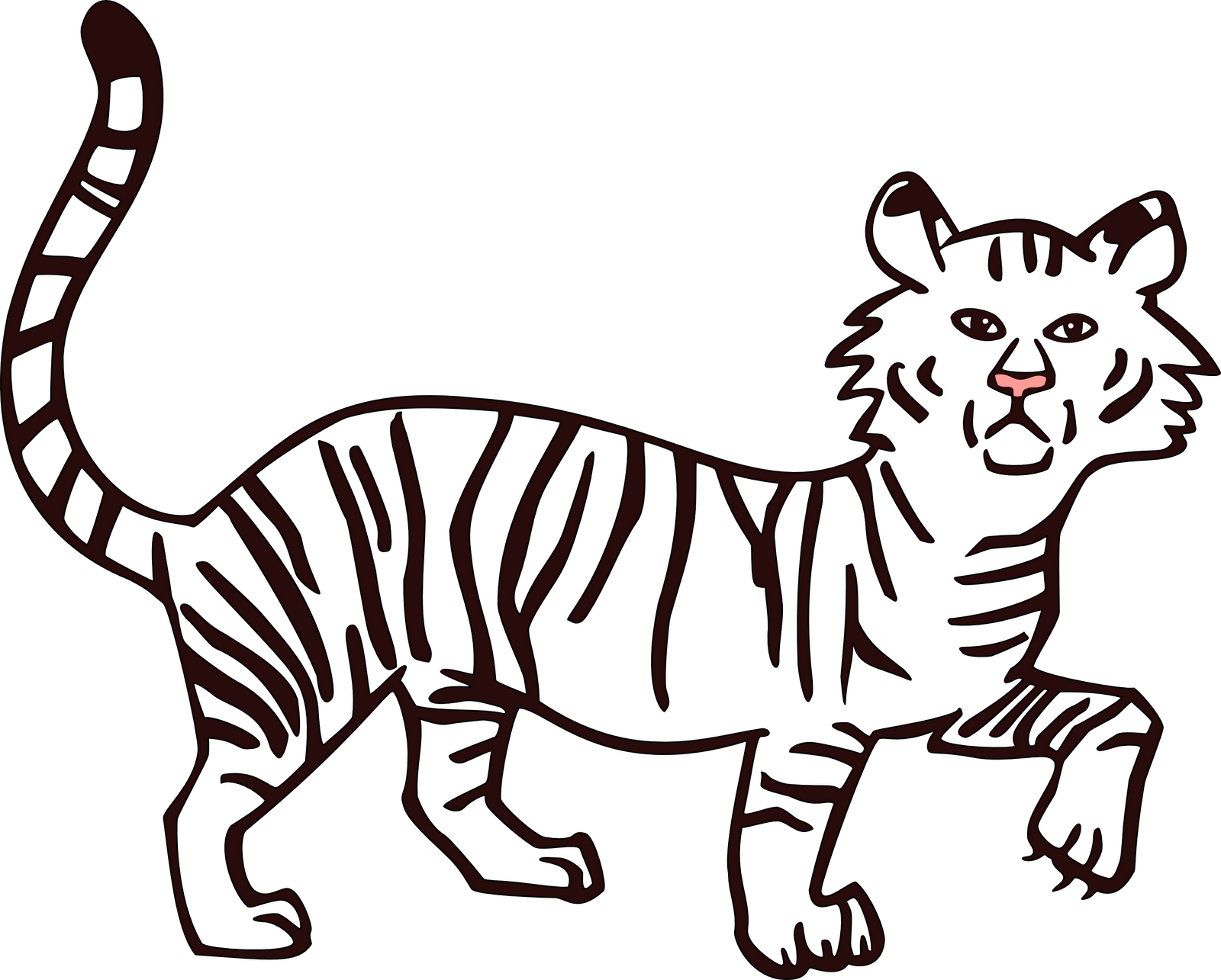 Drawing tigers basic. Tiger outline at getdrawings
