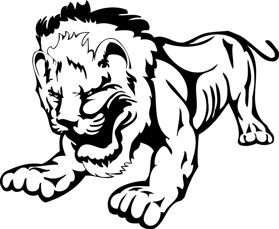 Drawing tigers climbing. Lion african leopard black
