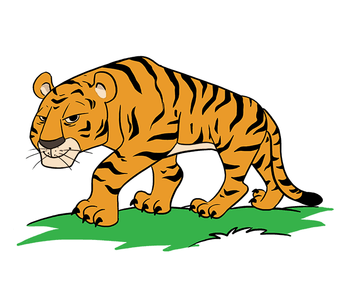 How to draw a. Drawing tigers image transparent