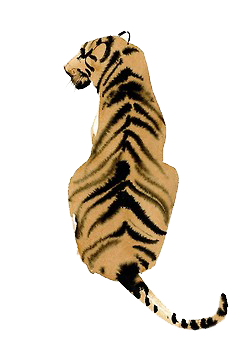 tigers drawing habitat