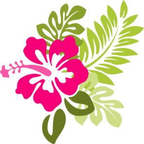 Drawing Hibiscus Transparent Png Clipart Free Download Ya Webdesign