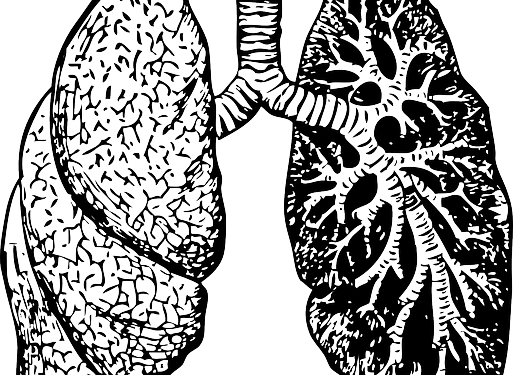 Disease drawing lung. Collection of free lungs
