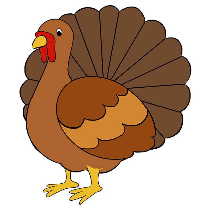 How to draw a. Drawing turkey easy graphic library download