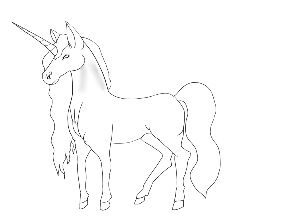 Drawing unicorns basic. Unicorn base lineart by