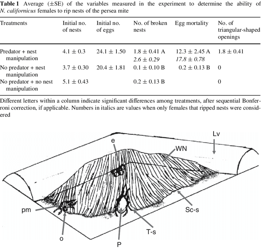 Drawing values egg. Schematic of a broken