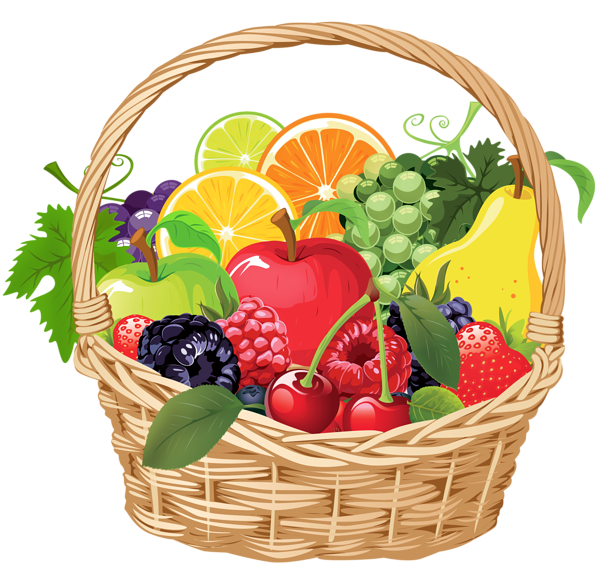 Drawing vegetable basket. Fruit png vector clipart