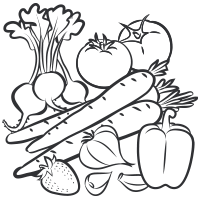 Vector vegetables black and white. Collection of fruits