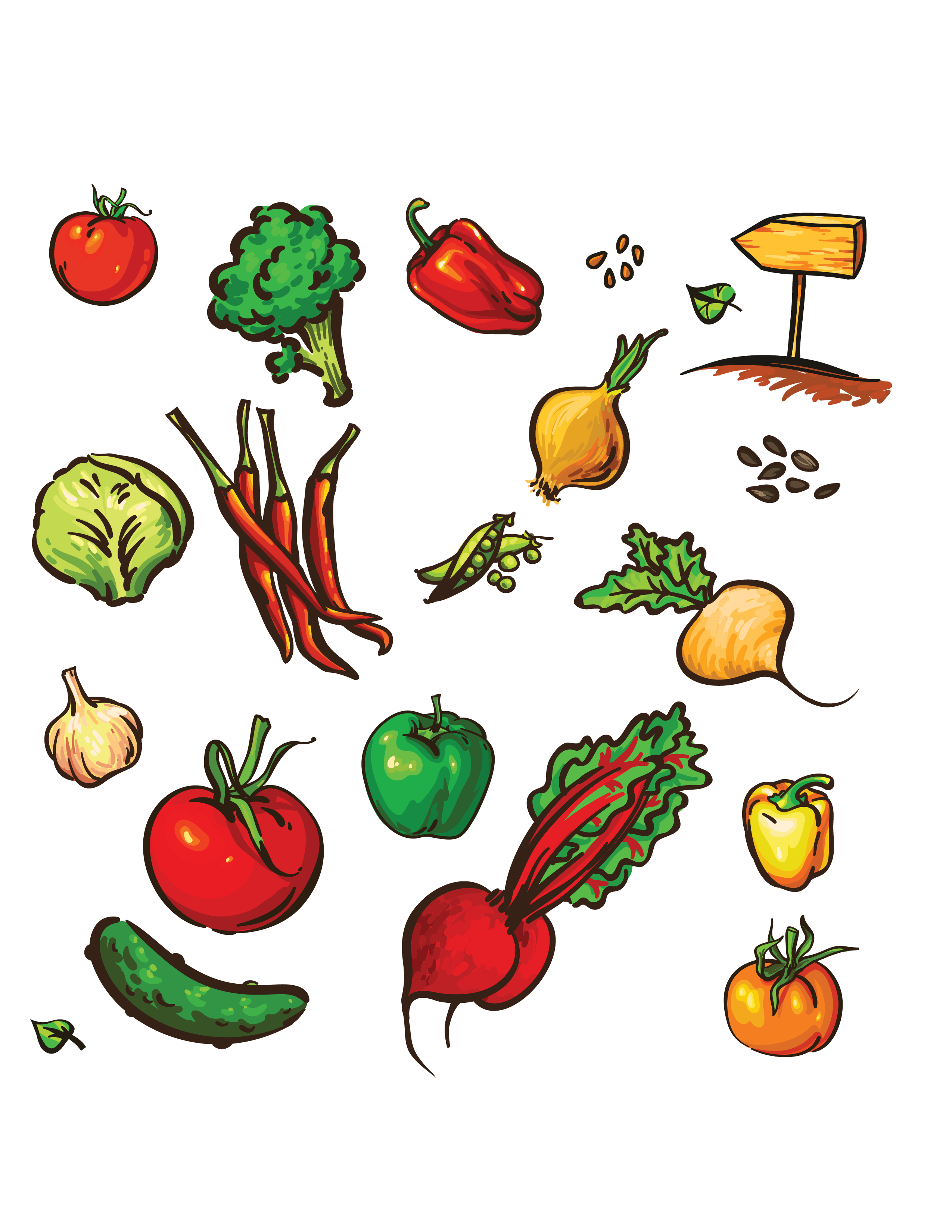 Drawing vegetable group. Diet full of fruits