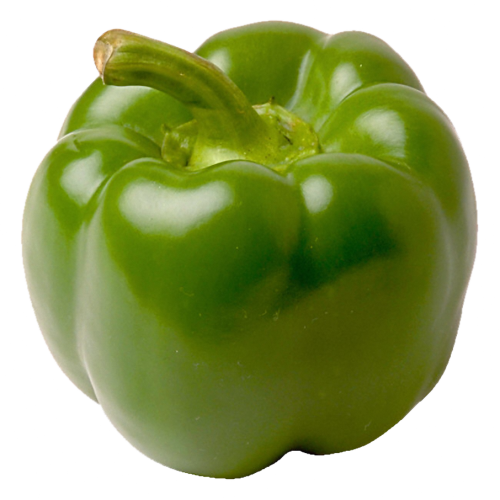 Drawing vegetables shimla mirch. Green bell pepper two