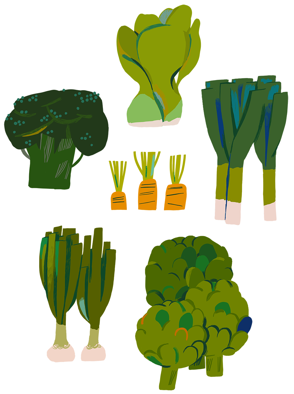 Drawing vegetable design. Vegetables green grow your