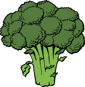 Drawing vegetables broccoli. Clip art at clker