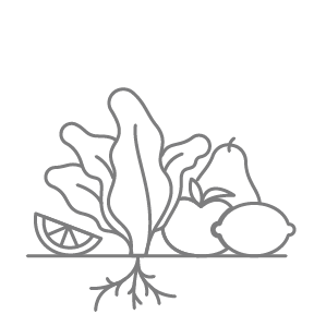 Drawing Vegetables Easy Transparent Png Clipart Free Download Ya