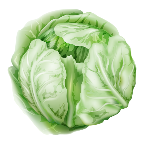Vector vegetables doodle. Collection png