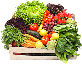 Drawing vegetables raw vegetable. Png transparent images pluspng