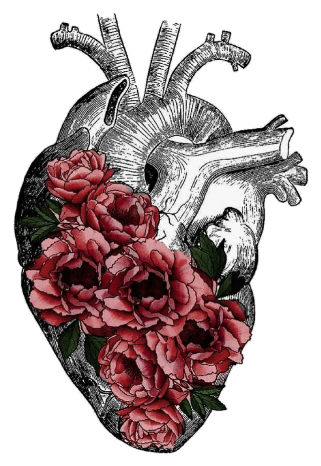 Replace veins with tree. Drawing wallpapers heart clipart download