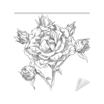 Drawing wall flower. Hand blossom mural pixers