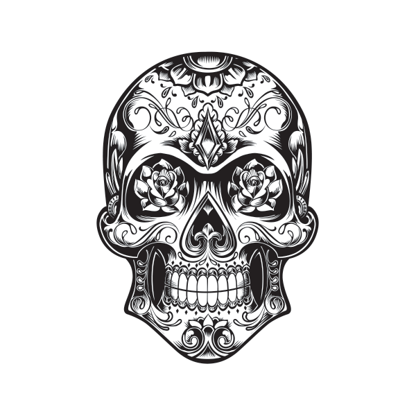 Drawing wall skull. Printed vinyl decal sticker