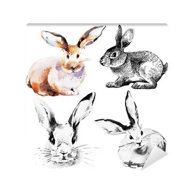 Hares drawing hand drawn. Set of easter rabbits