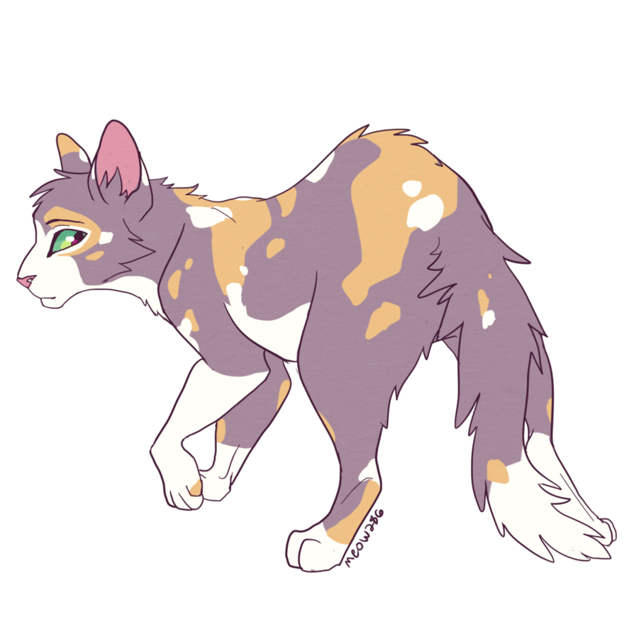Discord drawing cat. Tawnypelt by meow deviantart