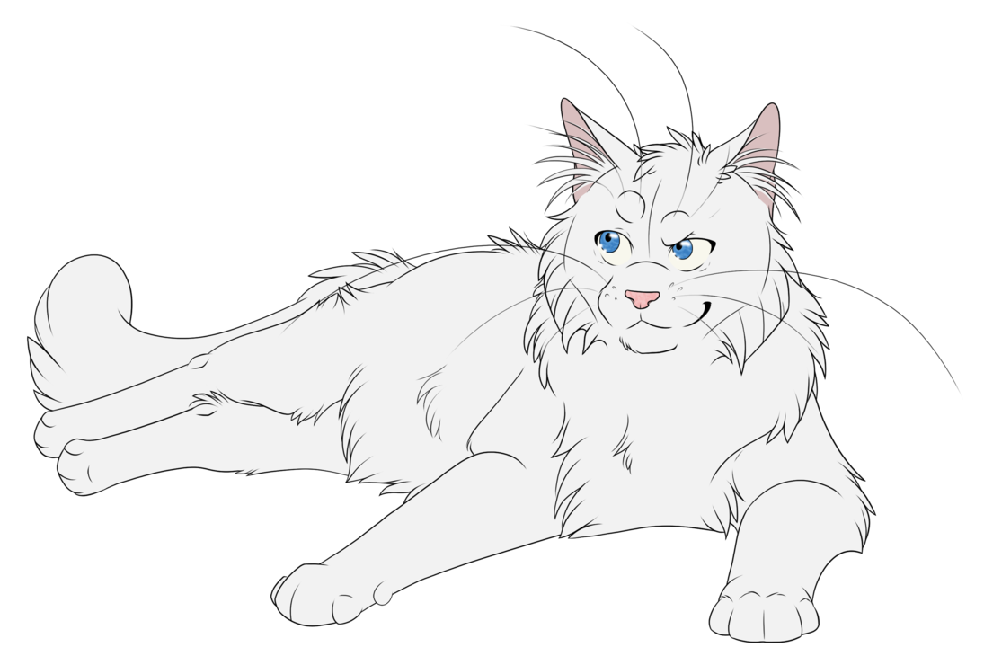 Drawing warrior. Cats cloudtail by kuroi