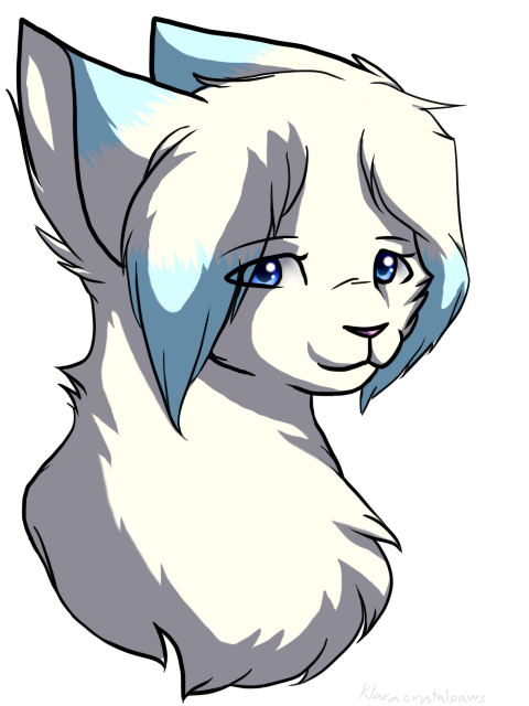 Drawing warrior magic. Sss cats frostfur by