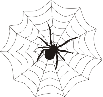 Drawing web face paint spider. Image result for in
