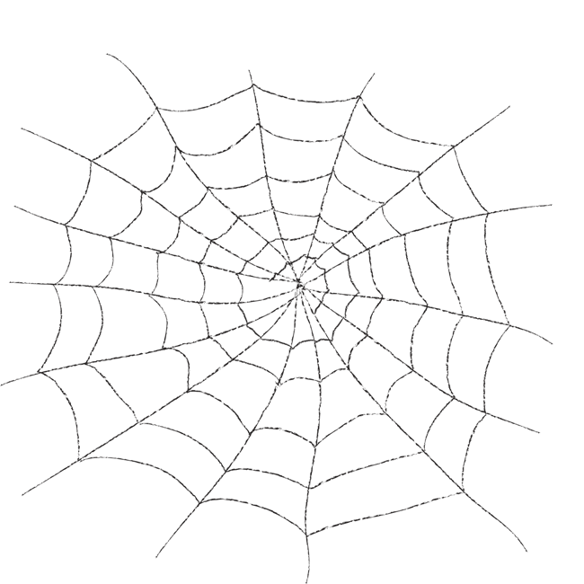 Drawing web spider silk. Transparency and translucency clip