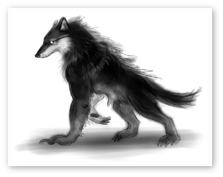 Drawing werewolf beast. Werewolves shape shifters all