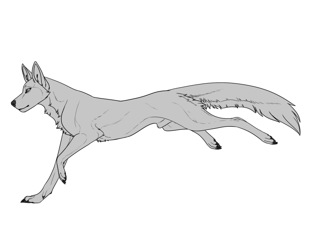 Transparent base wolf. Canine f u male