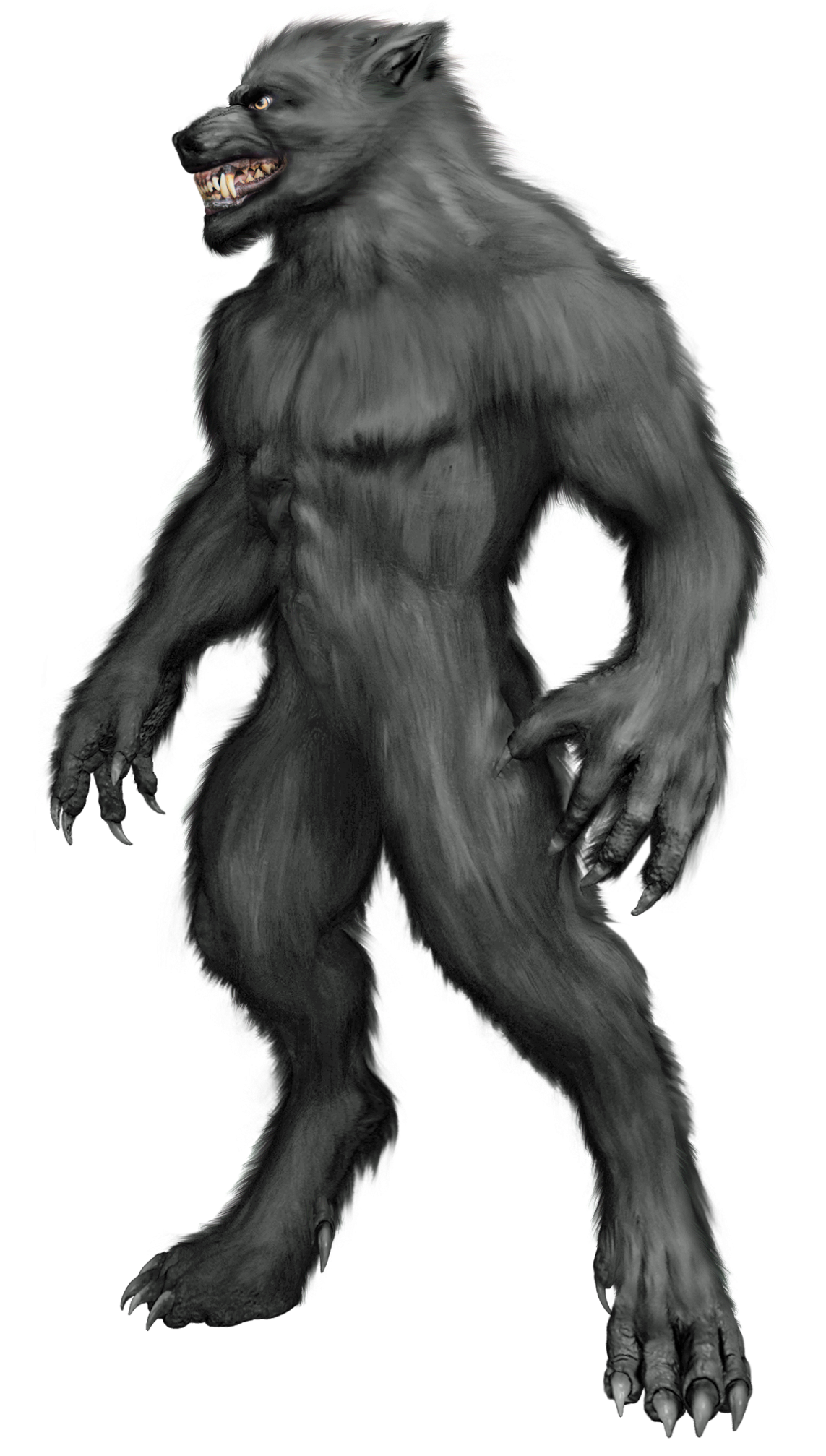 Transparent werewolf 3.5. From weretiger creatures