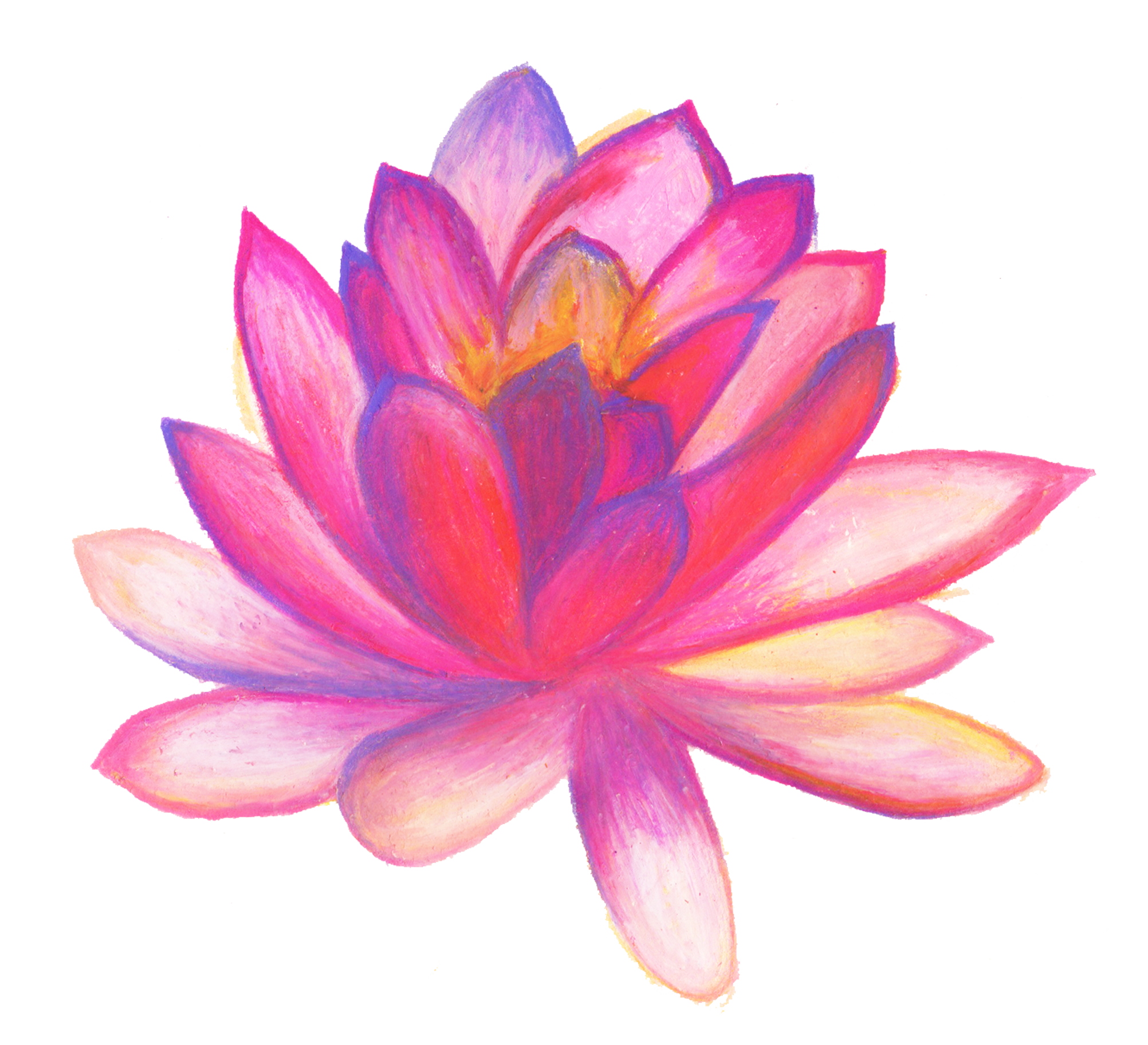 Poster hand flower with. Drawn flowers png image free download