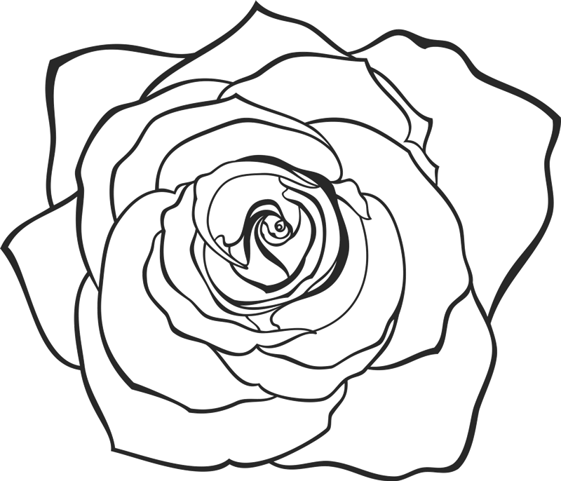 Drawn flower png. Hand rose rubber stamp