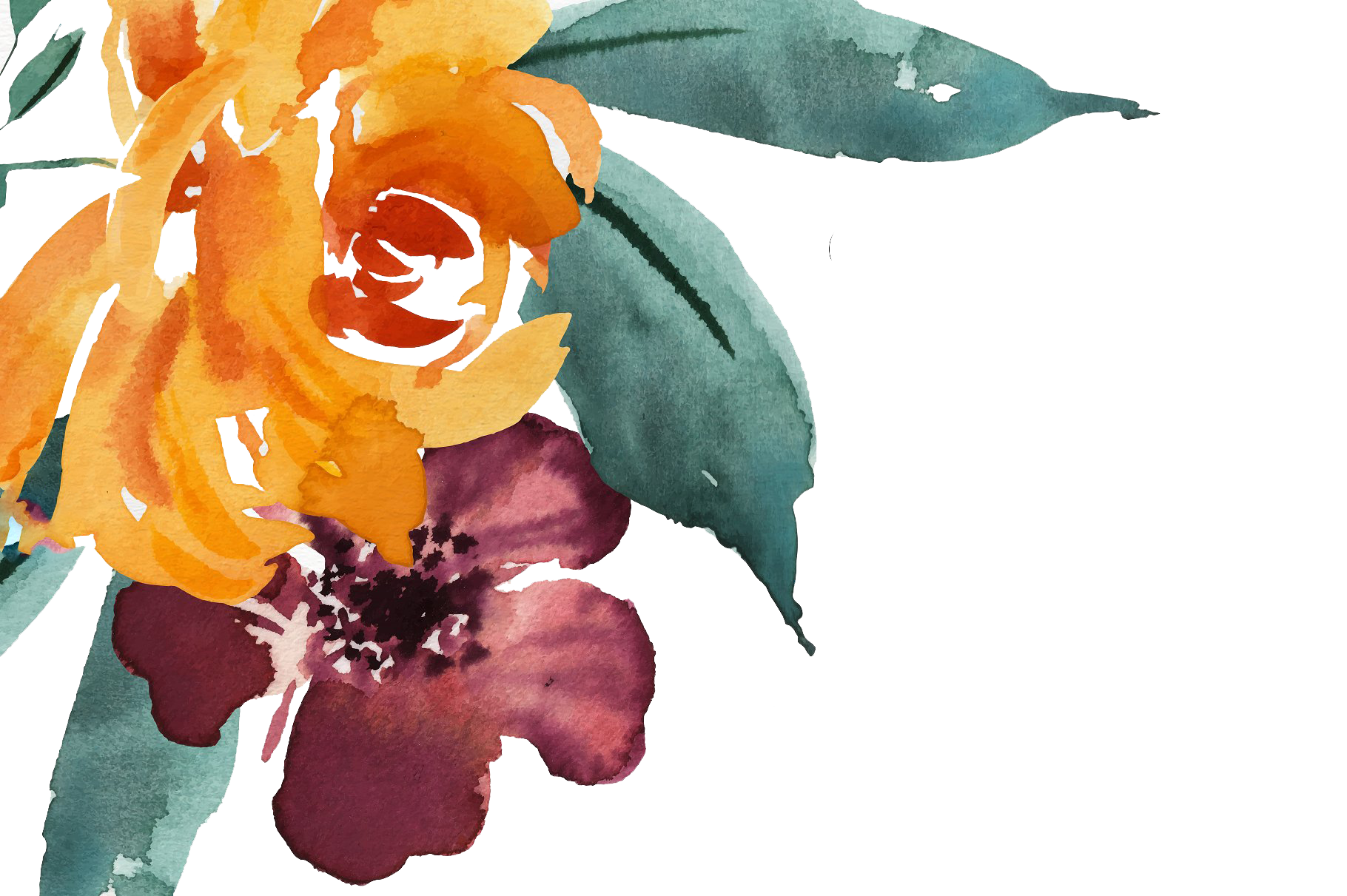 Free watercolor hand with. Drawn flowers png graphic stock