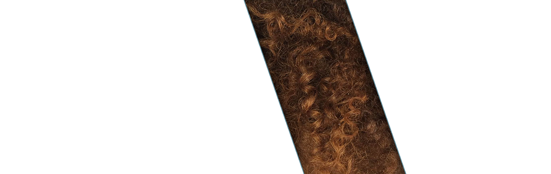 Dreads hair png. Naturally trendy salon your