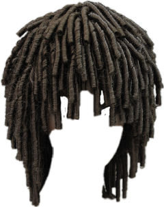Popular and trending dreadlocks. Dreads png clip black and white library