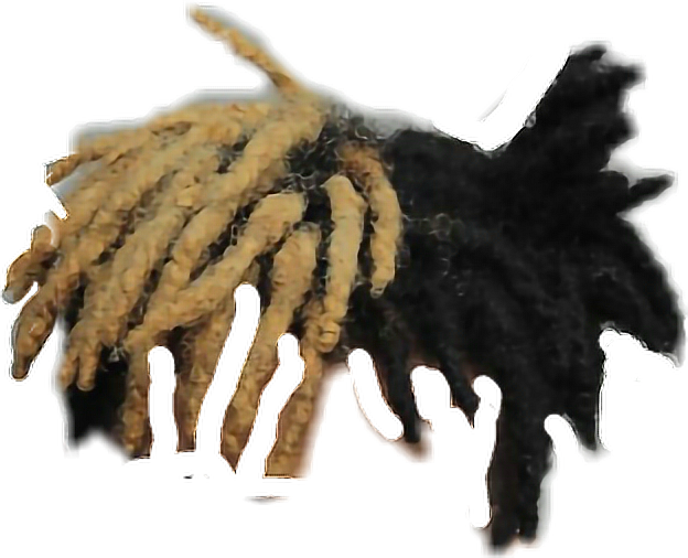 Dreads png transparent. Sticker by jackdunnew