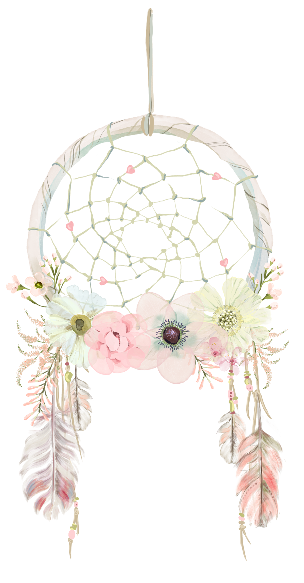 dreamcatcher transparent whimsical