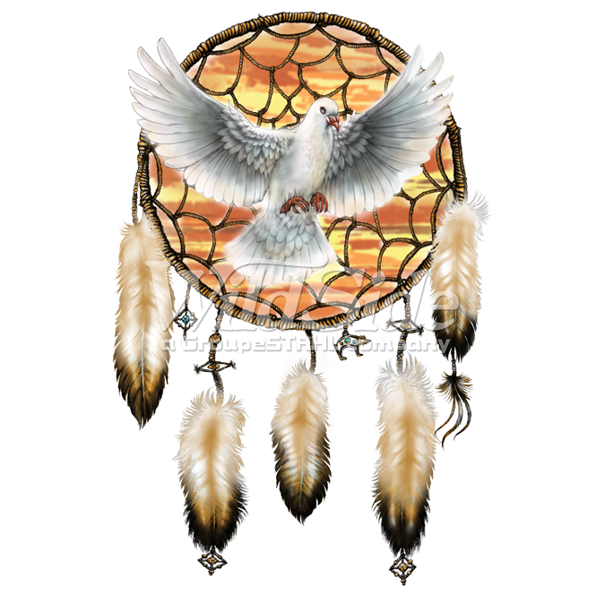 Dreamcatcher transparent eagle feather. Dove the wild side